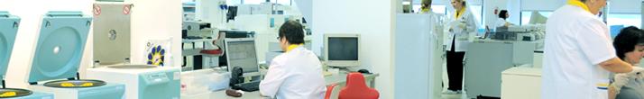 Синево лаборатория