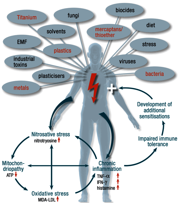 хроничните възпалителни болести