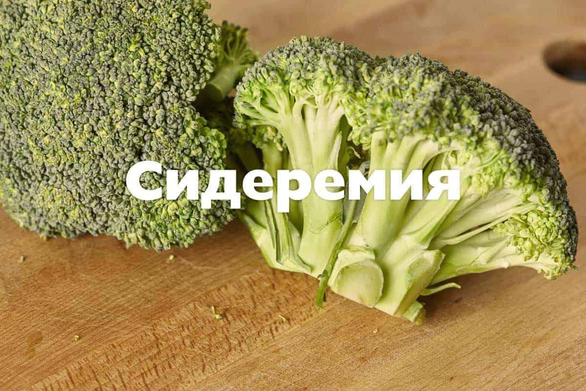 Сидеремия
