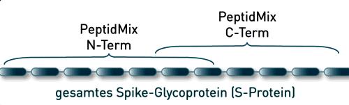 peptidmix